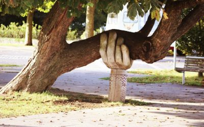 This Tree's Lesson about Customers